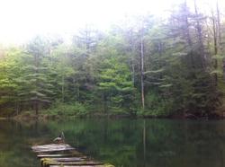 Nature15